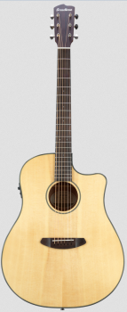Breedlove Discovery Dread CE inkl. Bag