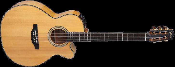 Takamine TACNC-WS2 Gitarre mit Pickup