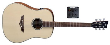 VGS RT-10E Natur Dreadnought